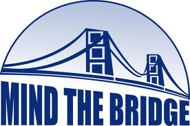 Mind the bridge