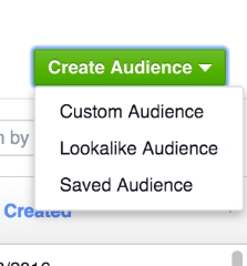 create custom audience - menu