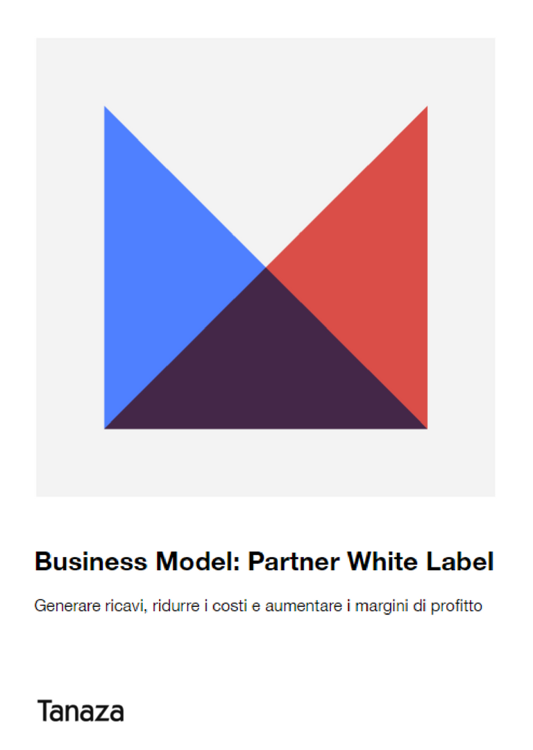 Modello di business di un partner WL